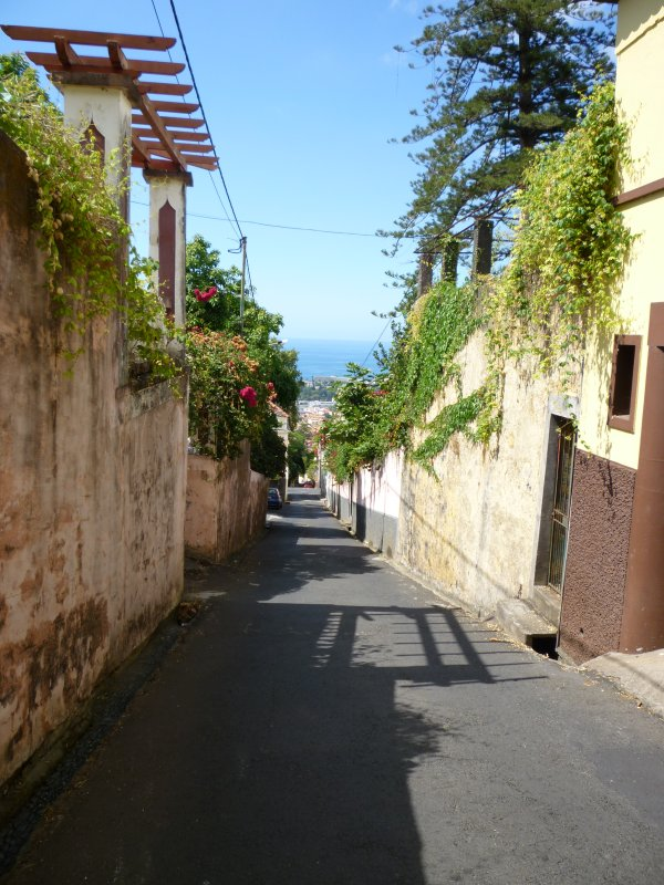 Steep roads back to centre of Funchal